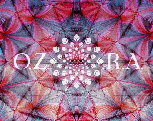 Tips and Tricks for Ozora Festvial